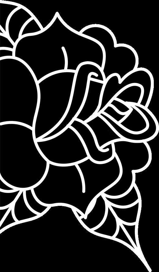 image-flower-main